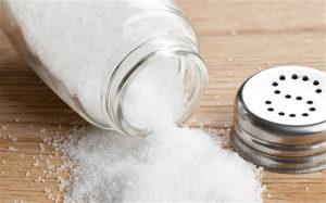 Salt - Sachi Shiksha